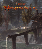 Neverwinter Online Review