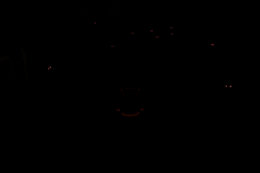 Wolf eyes in dark - photo#16